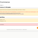 xt:Commerce 4.1 Update - Updateprüfung